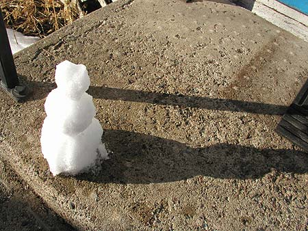 miniature snowman on the front steps